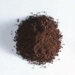 pulbere de cicoare